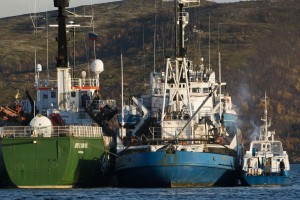 Arctic Sunrise Inspected By Russian Authorities