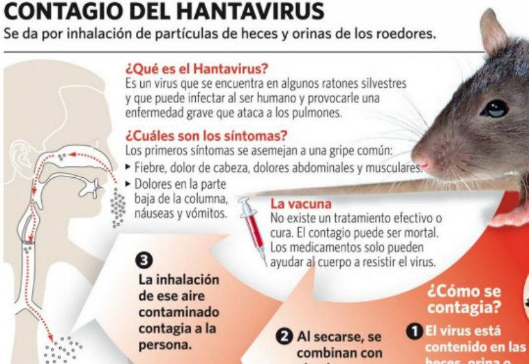 HANTAVIRUS-2-540x372