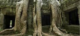 La selva había ocultado aún más de la fascinante historia de Angkor.