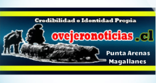 header_ovejero_ricardo