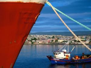 La-costa-de-Punta-Arenas-Chile