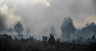 Incendio-Forestal-San-Juan-07
